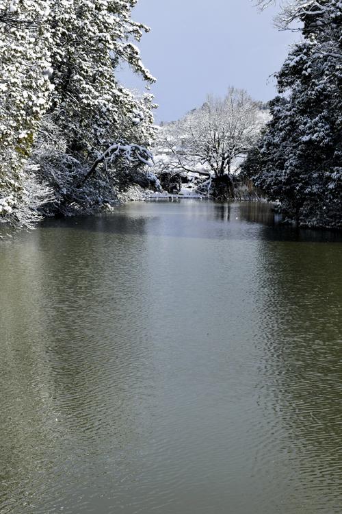 snow_pond_16_3_1_8.jpg