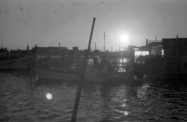 Pier29a