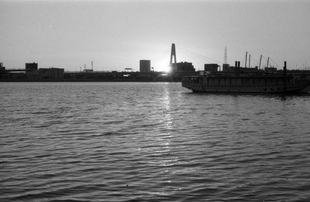 Pier31a