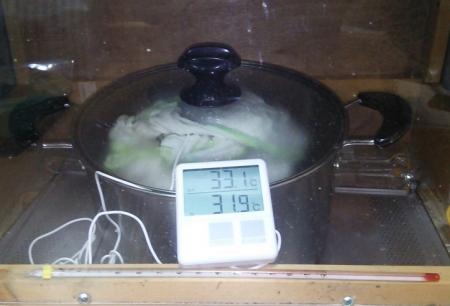 米麹 培養中1