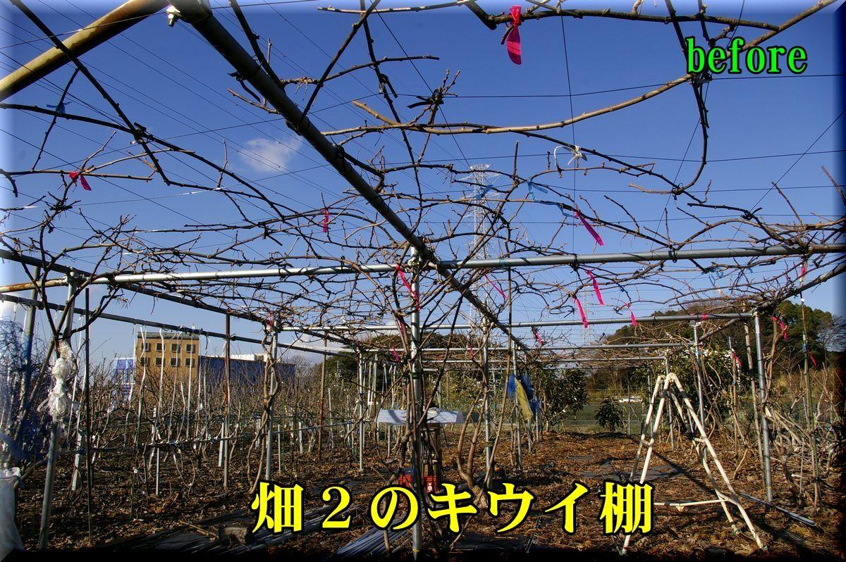 1H2kiui160216_004.jpg