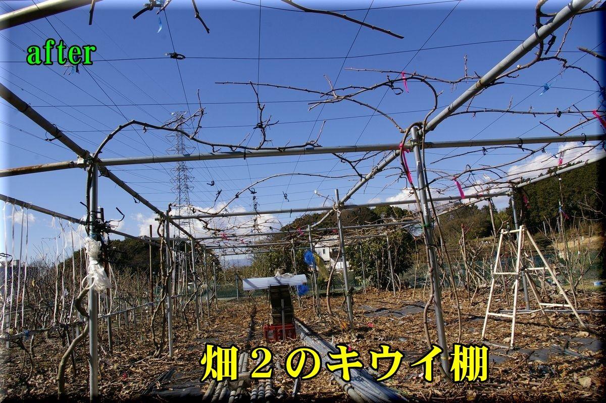 1H2kiui160216_012.jpg