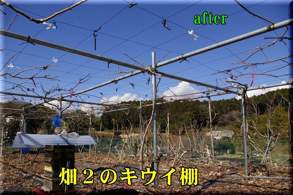 1H2kiui160216_014.jpg