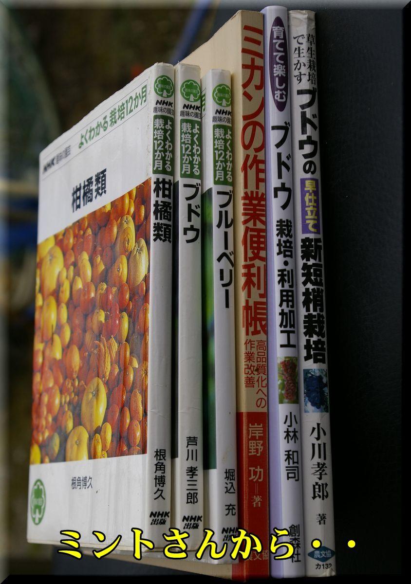1book160206_007.jpg