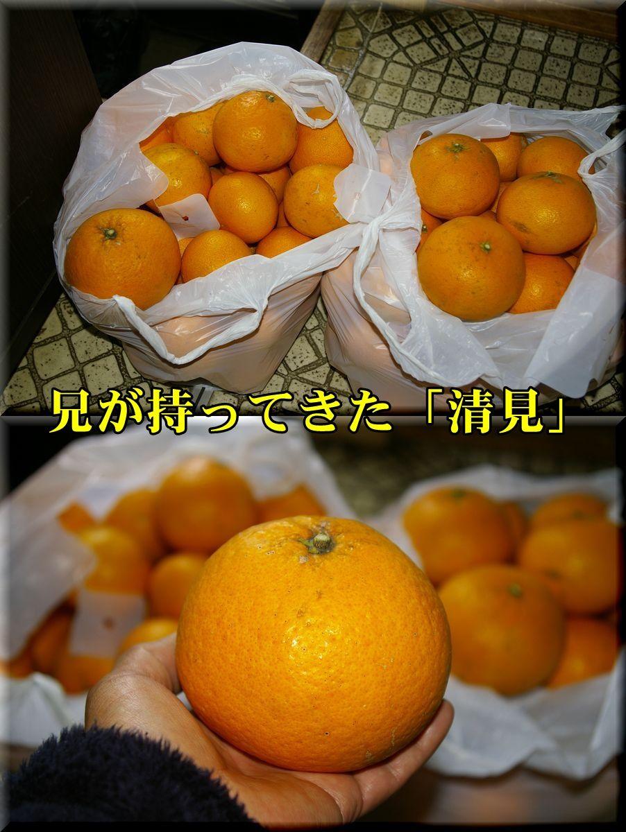 1kiyomi160206_001.jpg