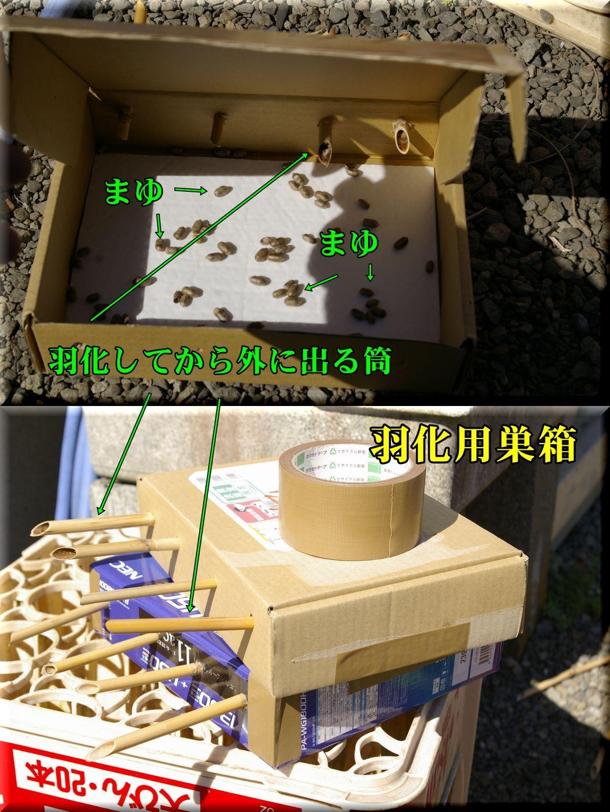 1ukabako160221_019.jpg