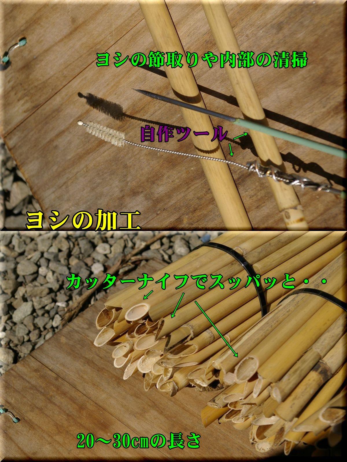 1yosi160221_014.jpg
