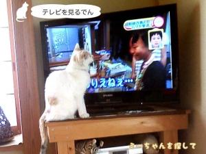 テレビを見 るでん