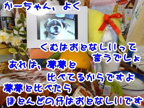 0202-11_20160202163306265.jpg