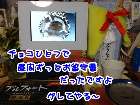 0207-01_201602071933204fe.jpg
