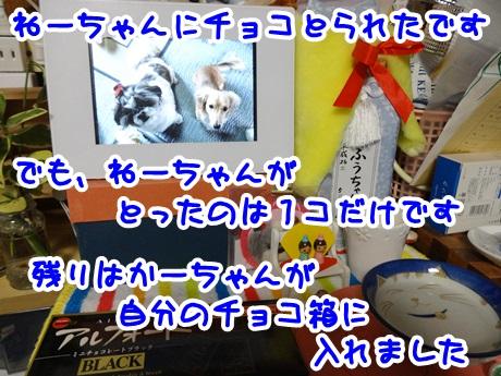 0209-01_20160209173433194.jpg