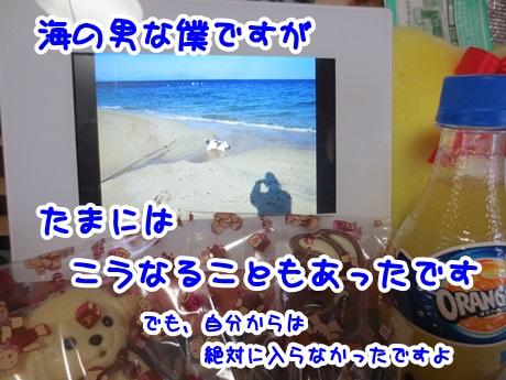 0224-11_20160224193031c76.jpg