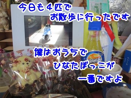 0225-11_20160225170116b1a.jpg