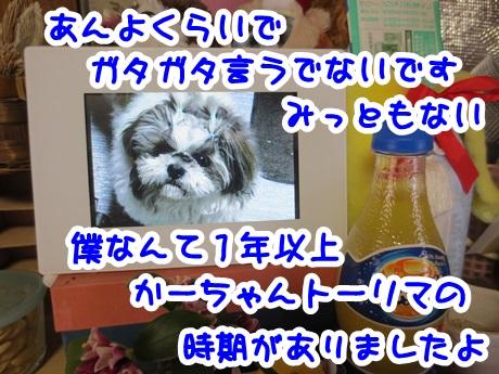 0226-07_2016022614505903f.jpg