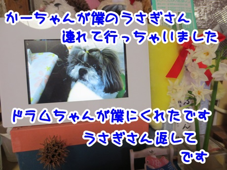 0311-01_201603111503370a2.jpg