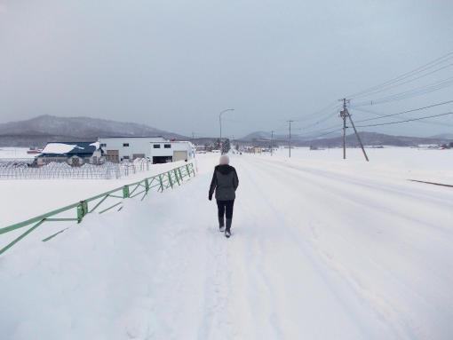 20160101_神社までお散歩1
