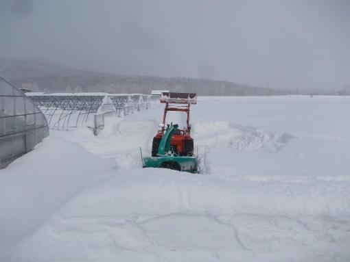 20160226_圃場周囲除雪
