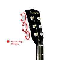 Guitar-04