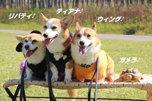 吉野ヶ里 2015-10-18-8