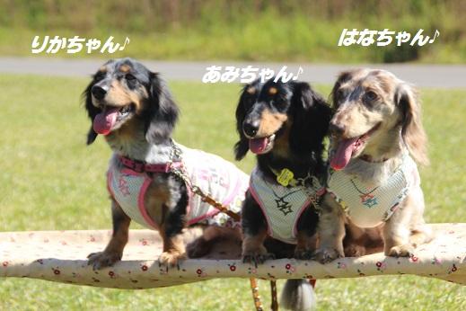 吉野ヶ里 2015-10-18-9