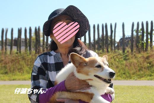 吉野ヶ里 2015-10-18-12