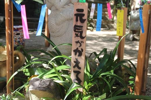 かえる寺2 2015-10-18-2