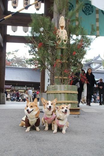 八坂神社 2016-1-3-1