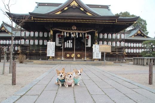 恵比寿神社 2016-1-4-5