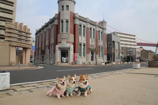 お散歩 2016-1-4-5