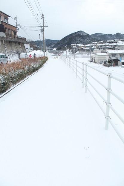 寒波2 2016-1-24-3