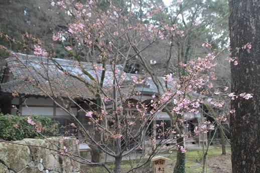 かまど神社 2016-2-24-9