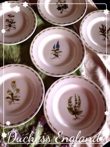 Duchess Herb Plates