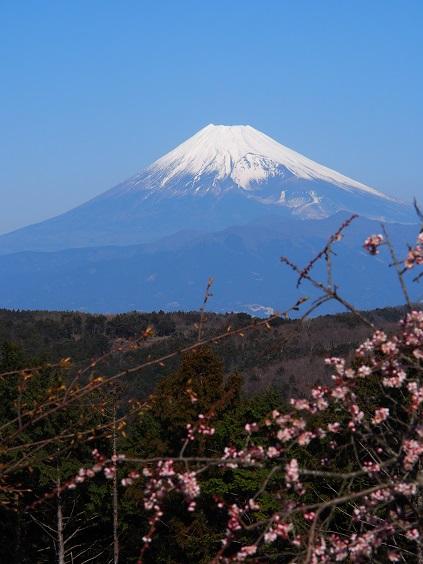 P2190782 富士山