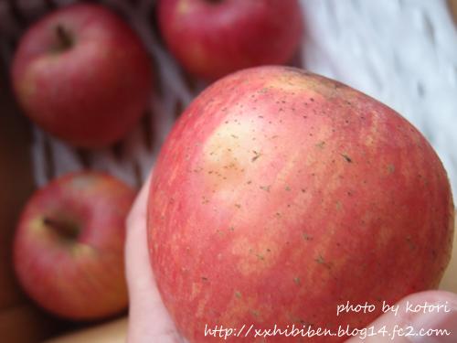 nagano_apple_3.jpg