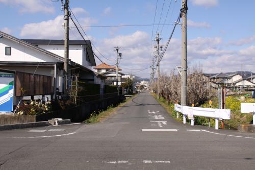 永田接骨院の先梅2.17