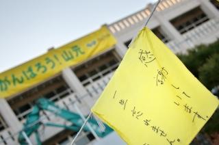 s-20130108_黄色いハンカチorg