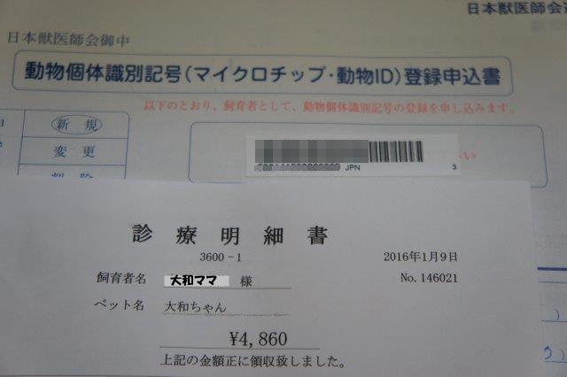 DSC09374.jpg