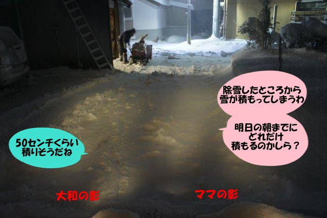 DSC09476.jpg