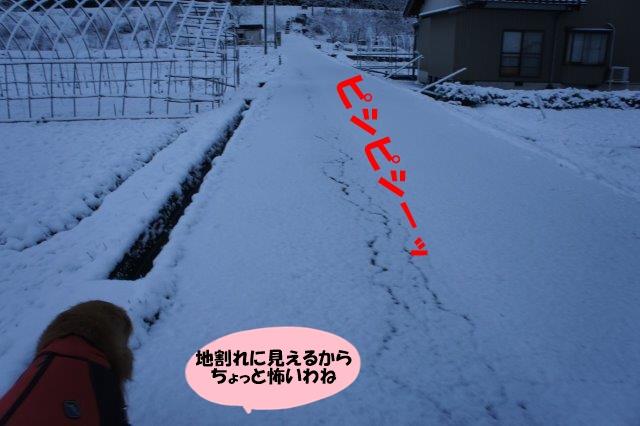 DSC09845.jpg