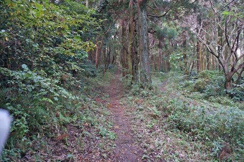 2ハイキング道