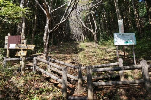 4ハイキング道