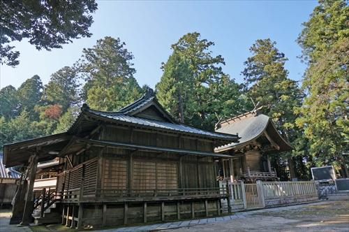 5神社の森