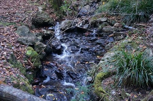 1最古の滝