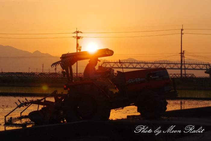 農作業 愛媛県西条市今在家