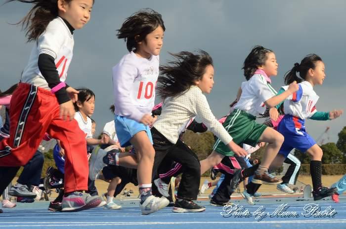 うちぬきマラソン ひうち陸上競技場