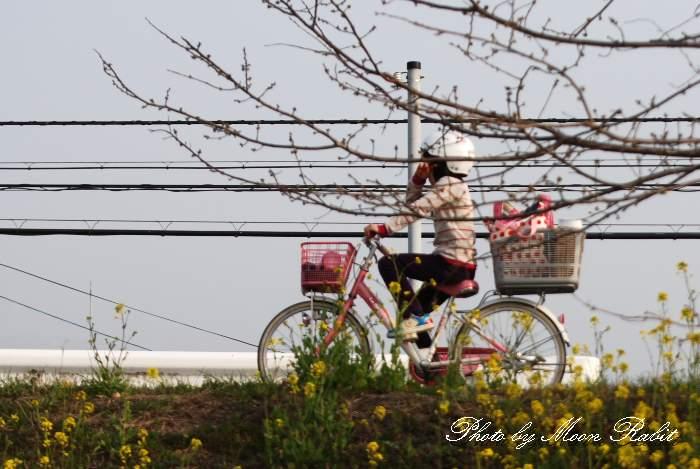 少女と自転車 愛媛県西条市氷見新兵衛