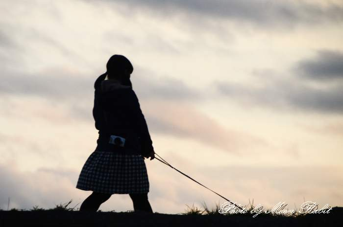 女子中学生 犬の散歩 愛媛県西条市古川 加茂川堤防