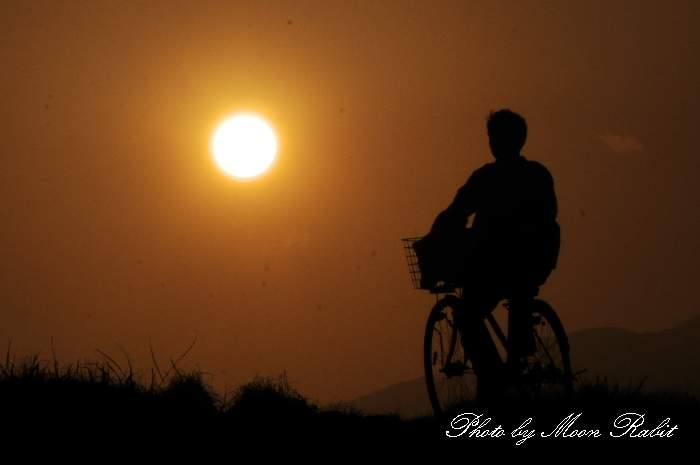 少年と自転車 愛媛県西条市王子町 加茂川堤防