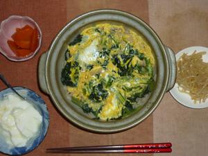 ほうれん草と玉子のおじや,もやしのわさび醤油炒め,人参の煮物,オリゴ糖入りヨーグルト