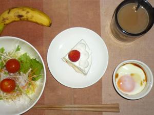 クリスマスケーキ(6分の1),サラダ(キャベツ、大根、レタス、トマト),目玉焼き,バナナ,コーヒー